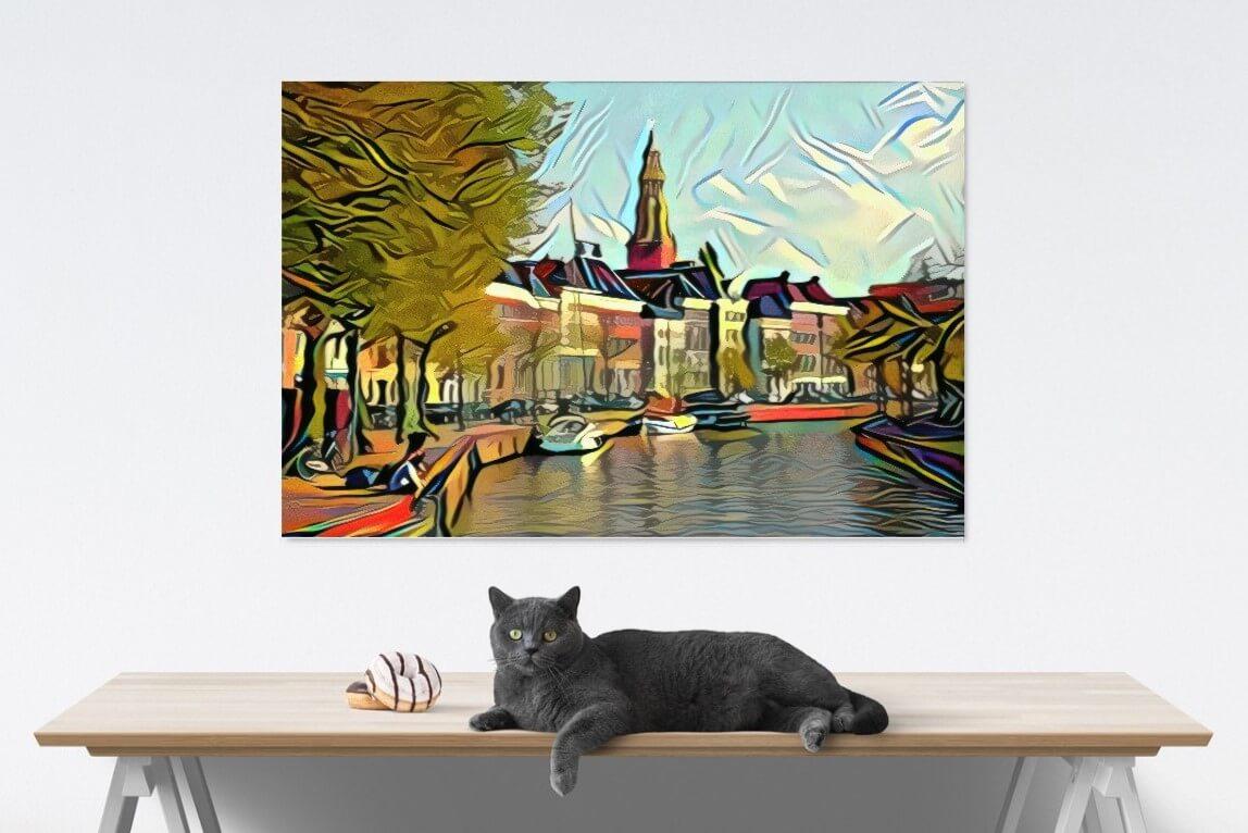 HogeDerAa Picasso met kat